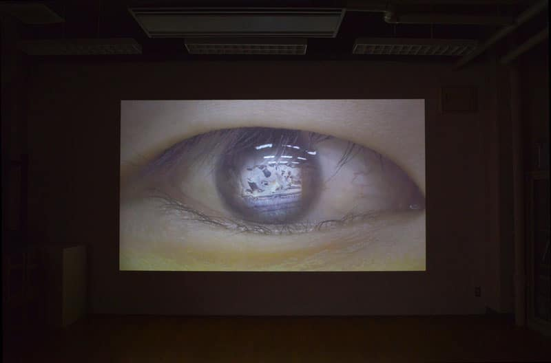 """Dog Eye"" 2017"