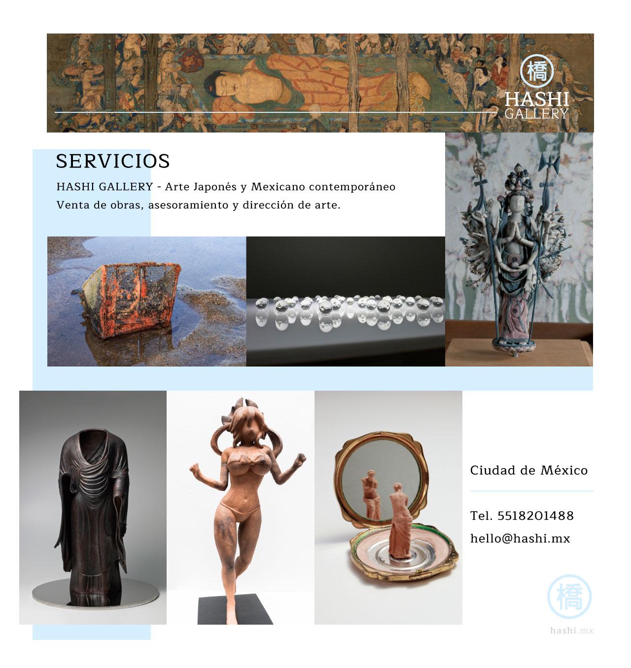 servicios_hashi_gallery_slide_fx3